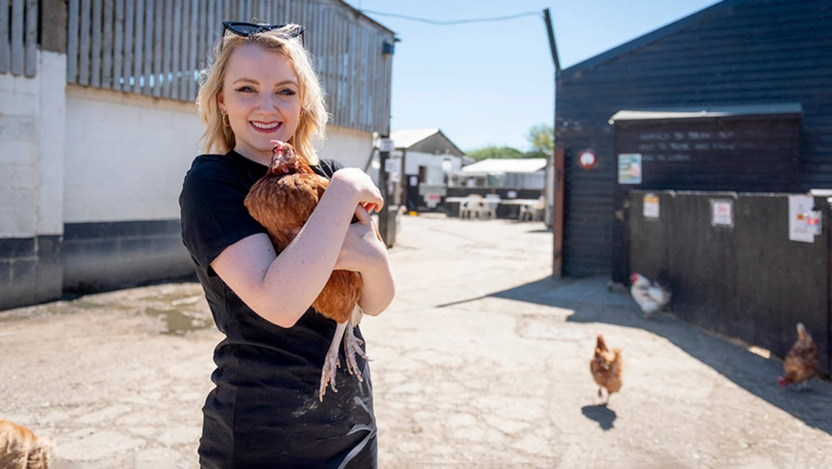 'It's Chaos': Harry Potter Star Evanna Lynch Goes Undercover In Chicken Factory Farm
