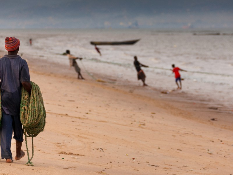 The Sierra Leone government has sold a beach and protected rainforest to China to build a fishing port