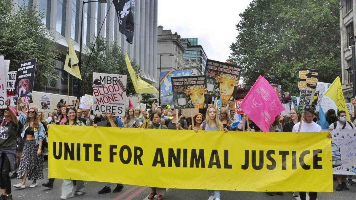 Animal freedom justice movement march in london