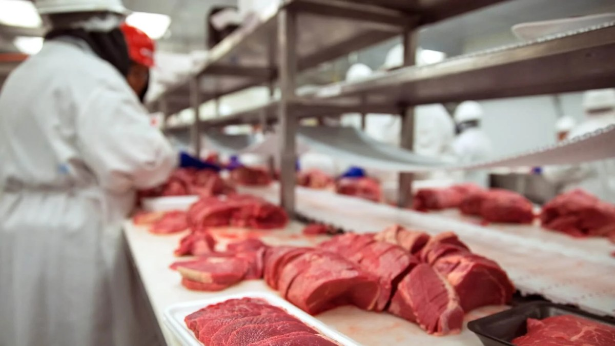 Meatpacking employees working on animal meat in a factory