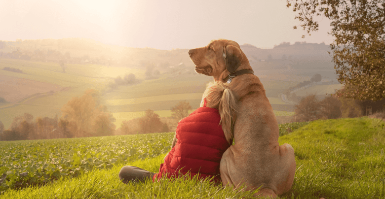 dog sitting with a little girl on a field