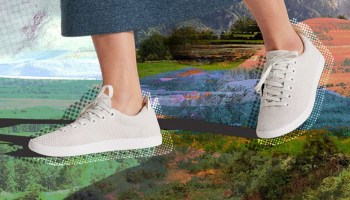Allbirds launches IPO and Plantible bags investment in vegan business news this week