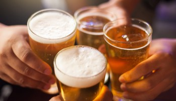 A new mushoom fiber is being used to help end animal products in beer