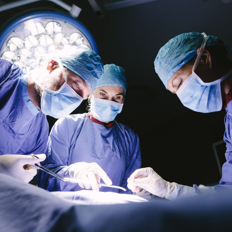 Surgeons Who Transplanted Pig Kidney Into Human Accused Of Unethical Practices