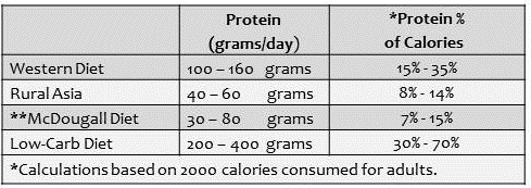 Protein-Intake-Table