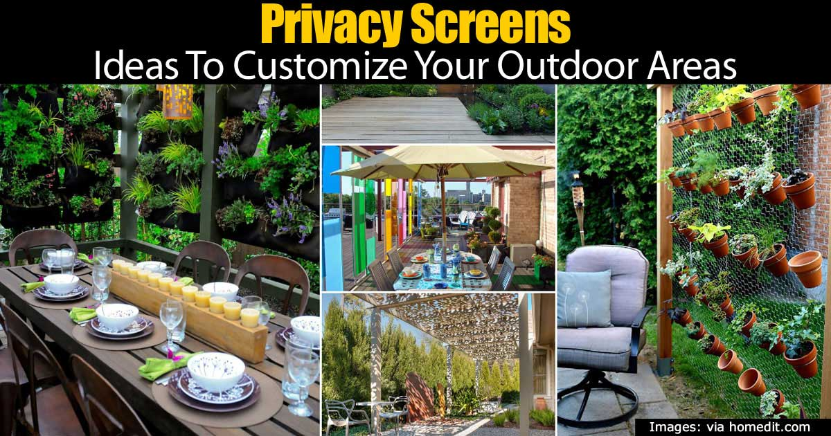 Privacy Screens Ideas To Customize Your Outdoor Areas