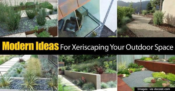 modern ideas xeriscaping
