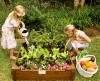 plantcarft.in garden organic workshop