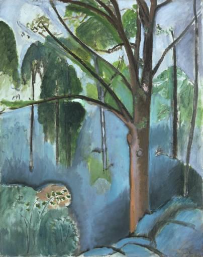 Botanical master Matisse