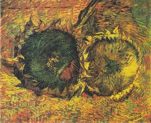 736px-Van_Gogh_-_Zwei_abgeschnittene_Sonnenblumen1