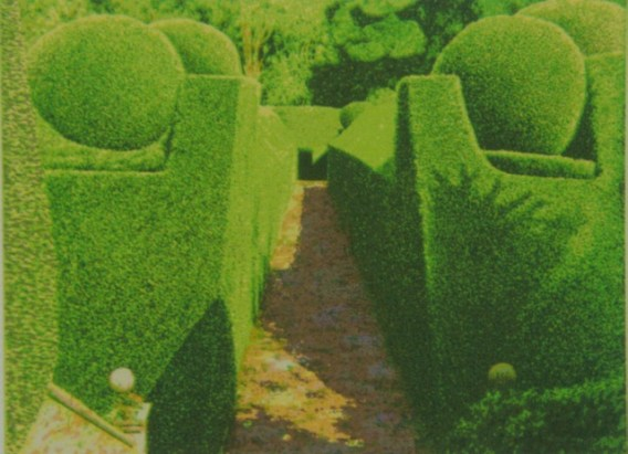 Norman Stevens crathes castle garden, 1985