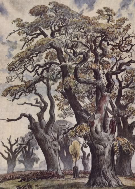 Richmond park tree painting