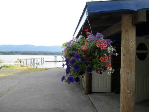 Hornby island art and nature