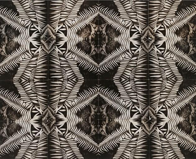 Horst pattern