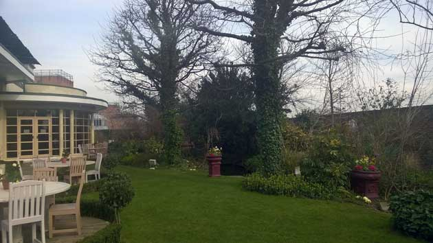 Plant pathways: Kensington garden trees