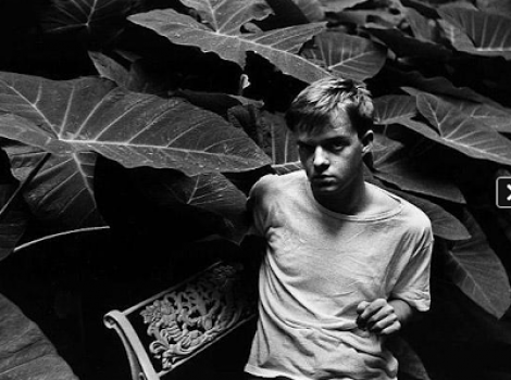 Creatives with Plants