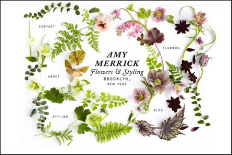 Botanically themed websites – Amy Merrick