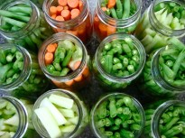 Green beans, celery, and carrots: ready to get pickled
