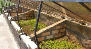 permaculture-madagascar