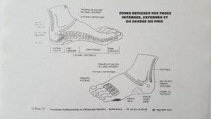 face-interne-pied-reflexologie