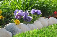 37 Creative Lawn and Garden Edging Ideas with Images ...