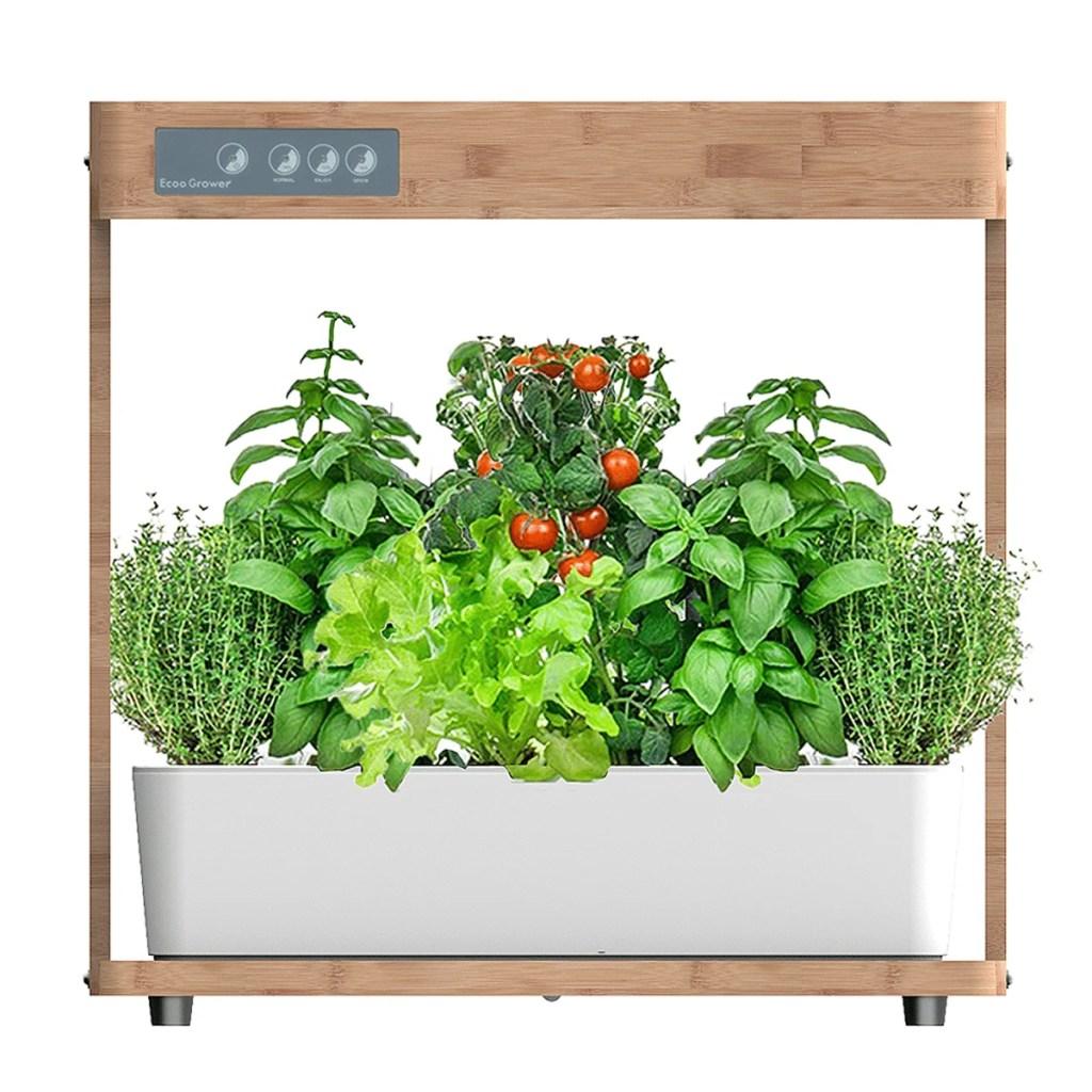 Smart garden med vand og lys