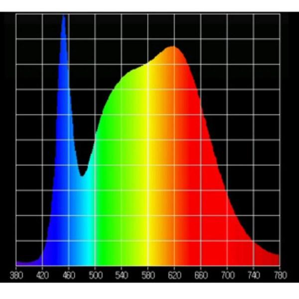 Plantelys spektrum
