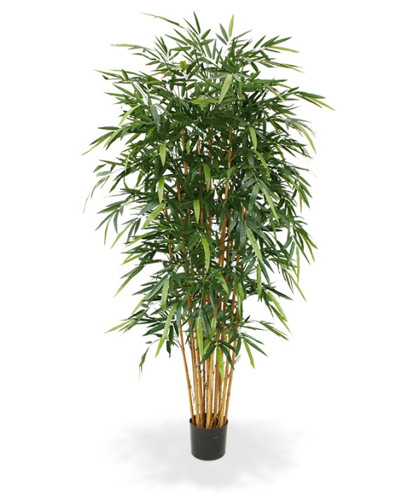 Bamboe Deluxe kunstboom 210 cm