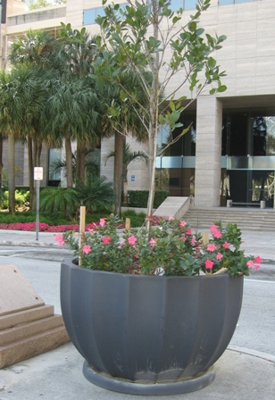 "While most ""me too"" planters are lightweight at the expense of strength, they may not be durable enough for certain locations.  Currently most fiberglass planter manufacturers are competing on price, with Indian and Chinese imports skimping on materials."