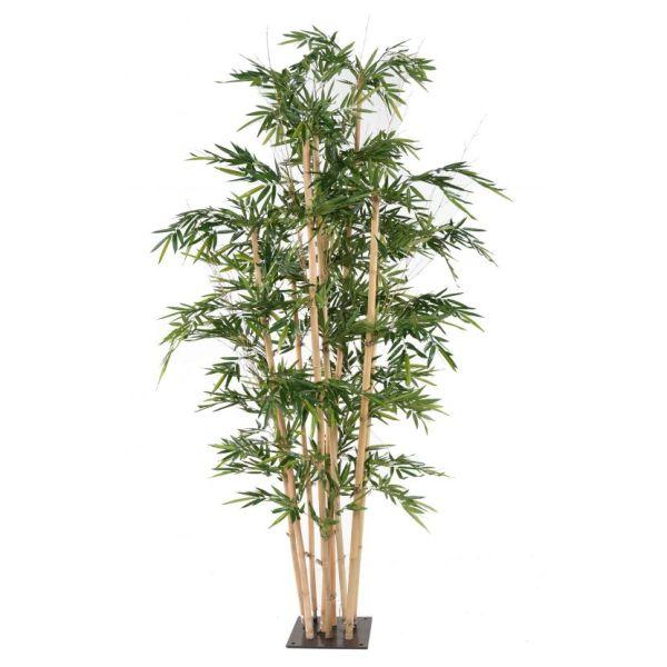 bambou géant 3-2 semi-artificiel