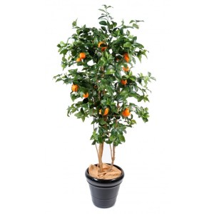 oranger semi-artificiel