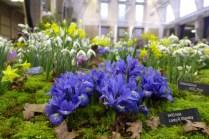 Broadleigh Gardens