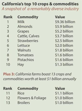 Volume 2 - Top commodities