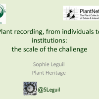 Plant recording, from individuals to institutions: the scale of the challenge