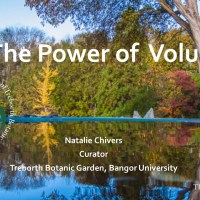 Treborth Botanic garden; the power of volunteers.