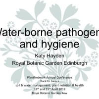 Water-borne pathogens and hygiene