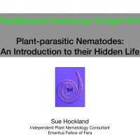Plant-parasitic nematodes - An introduction to their hidden life