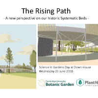 A new perspective on the Cambridge University Botanic Garden Systematic Beds