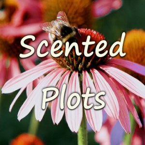 Good For The Nose Plots