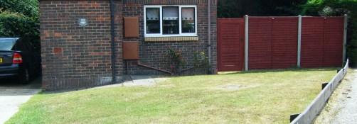 front garden bare