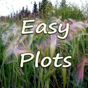 Low Maintenance Garden Borders