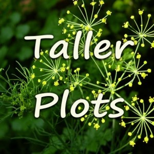 Plots That can get Taller Than You