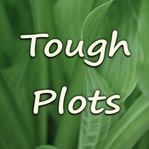 Plots For Tough Places