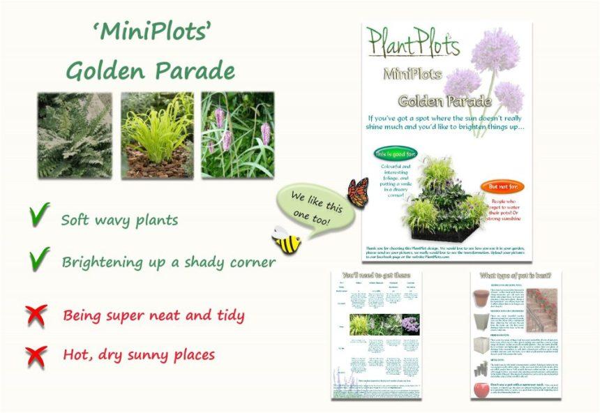 planting in shade garden border design product