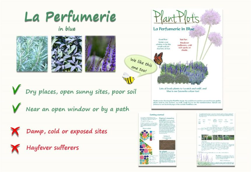 scented garden border plan product