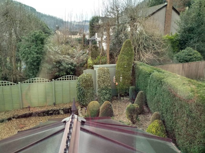 Inside the mind of a garden design - hedges and fences everywhere!