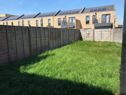 small urban garden unplanted just grass and fences and overlooked by neighbours. How to design an urban garden