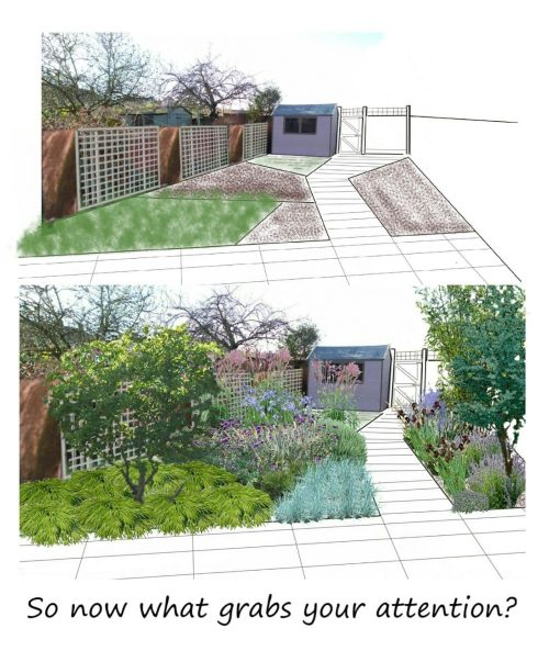 small garden design drawing assymetric design draw attention away from the fences and the shed