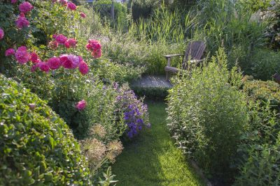Small lush green natural looking garden with wooden seat tucked amongst the garden border