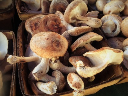 Shiitake Mushrooms look like little umbrellas. You want to remove the tough stems and use just the caps for this recipe. You can save the stems to make mushroom broth.